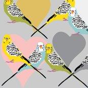 Rparakeets-custom-pallette_shop_thumb