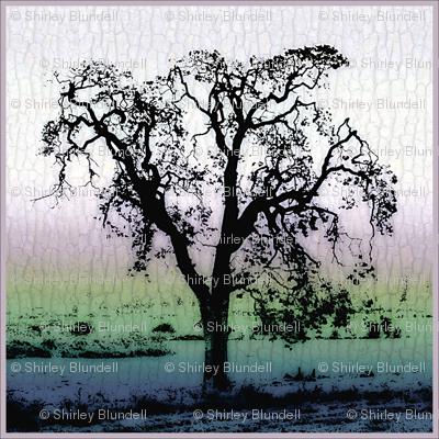 Garry_Oak Tree -bark background