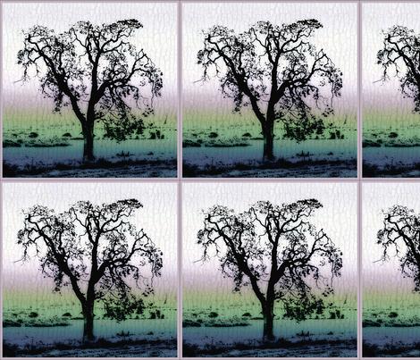 Garry_Oak Tree -bark background fabric by koalalady on Spoonflower - custom fabric