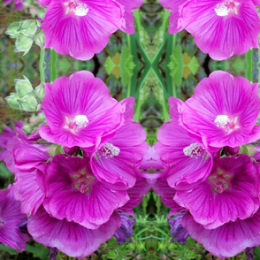 Hollyhock 2 Large Repeat