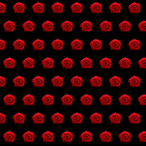 Roses When Red fabric by pond_ripple on Spoonflower - custom fabric