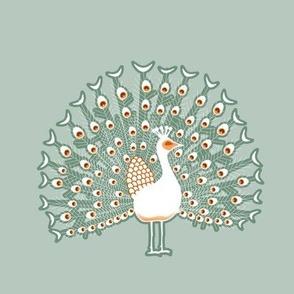 peacock gray
