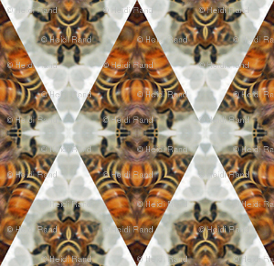 honey_bees_3B_2_inch