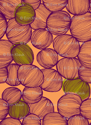 Onions in Coral, Purple and Green