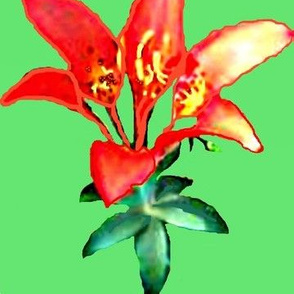 Sea Cairn Lily II