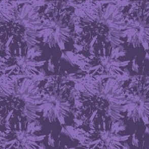 tone-on-tone_purple_asters_9_24_07_005-ch-ed