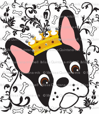 Queen Daisy the Boston Terrier