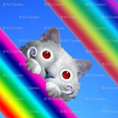 Voyeur Cat's Rainbows Version 1