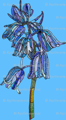 bluebell in dark blue