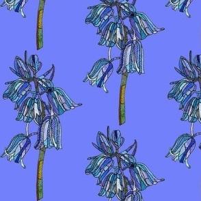 bluebell in ultramarine