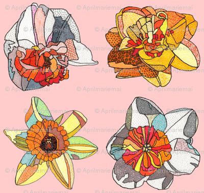 daffodils in pink