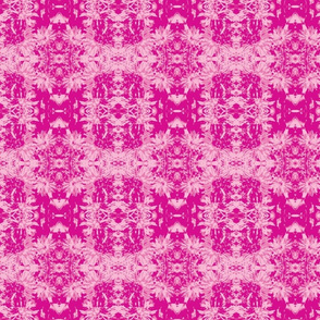 2 tone-on-tone_bright pink_asters_9_24_07_005-ch-ch-ch-ch