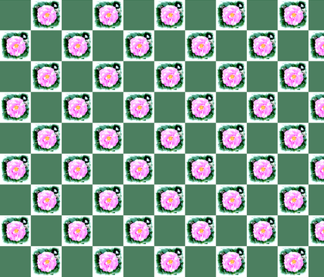 wild_rose_check_Picnik_collage fabric by khowardquilts on Spoonflower - custom fabric