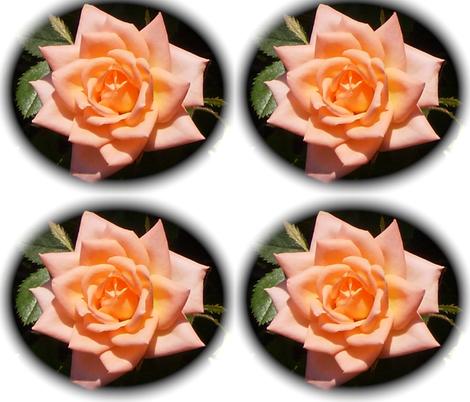 Peach rose fabric by murrday on Spoonflower - custom fabric