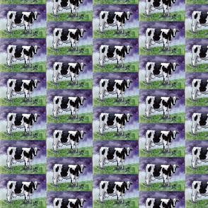cow-ed