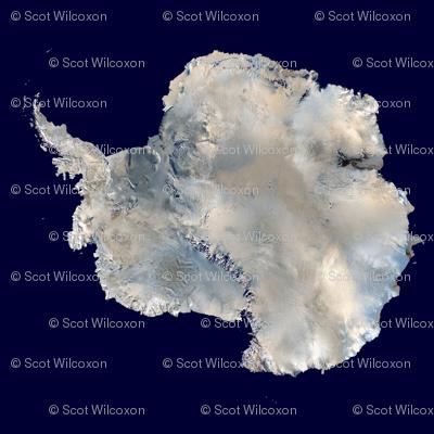 Antarctica 8 inch square