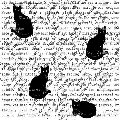 Kitty Cat Splat