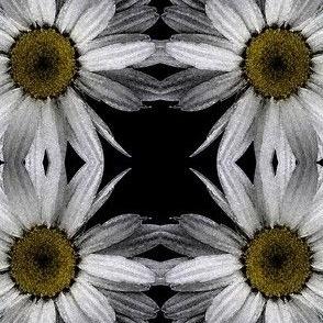 flower_centre_1