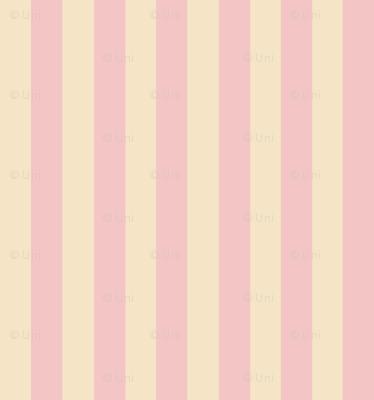 tender pink(coordi)