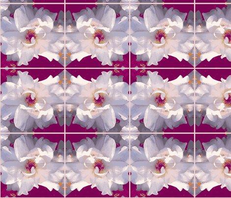Rose_white_pattern_shop_preview