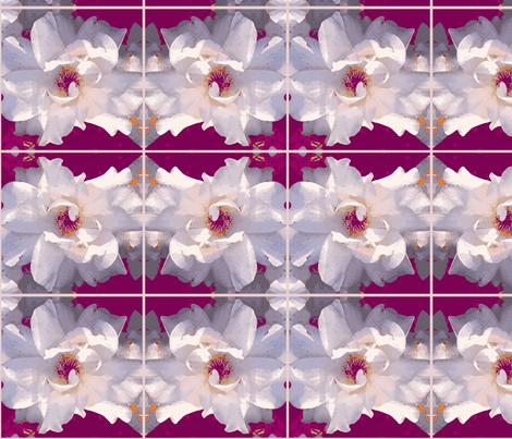 Palest of Roses Reborn fabric by engelstudios on Spoonflower - custom fabric