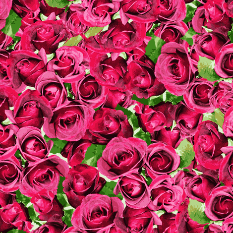 Abundant Roses - Pink fabric by inscribed_here on Spoonflower - custom fabric