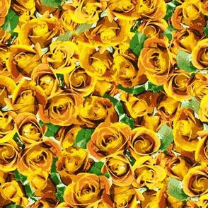 Abundant Roses - Gold