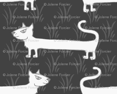 Weiner cat