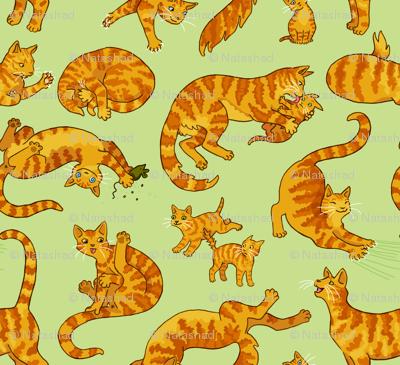 Marmalade Cats & Kittens