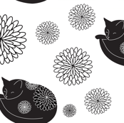 Cats in Bloom
