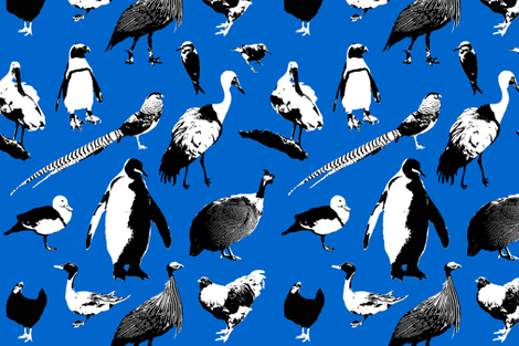 Exotic Bird Fabric fabric - primenumbergirl - Spoonflower