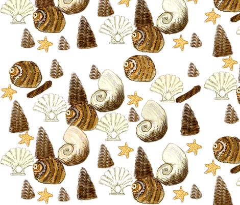 Red Coral Beach - Sea shells  fabric by paragonstudios on Spoonflower - custom fabric