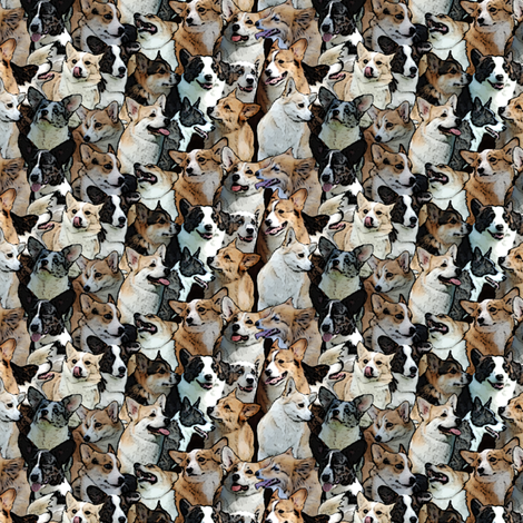 Corgi crowd fabric by rusticcorgi on Spoonflower - custom fabric