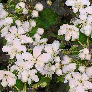 Blossoms_in_the_wild