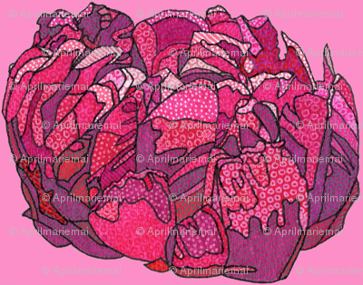 mini fuchsia peony in pink