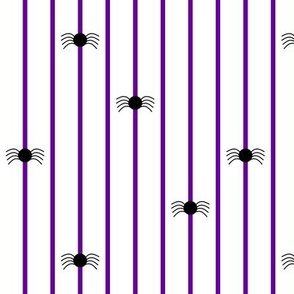Spider Stripe Black & Purple