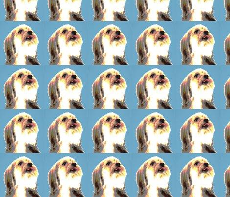 Dog_blue_square_shop_preview
