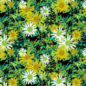 Wild Daisy - Botanical Colours