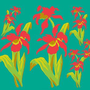 An Iris Inspiration