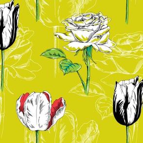 Botanical_contest_shop_thumb