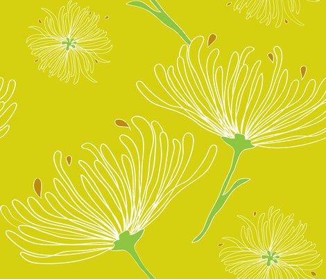 Jardin_botaniquerev-01_shop_preview