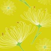 Jardin_botaniquerev-01_shop_thumb