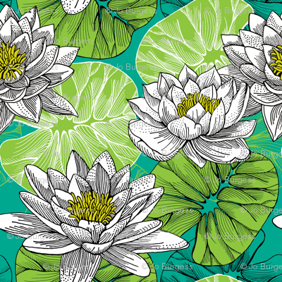 lily pond - botanical