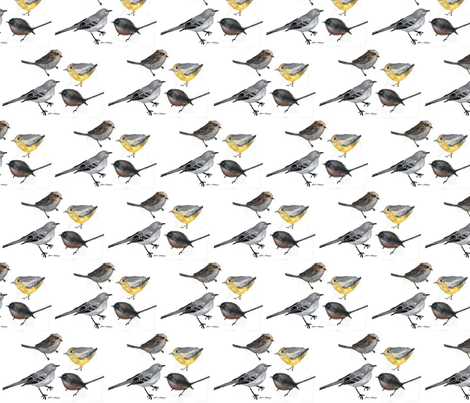 Bird Parade by Jane LaFazio  fabric by jane_lafazio on Spoonflower - custom fabric