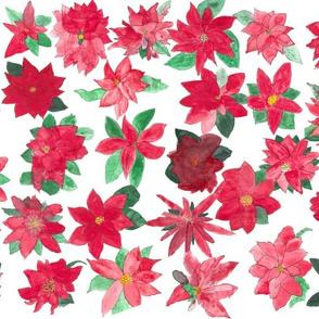 Poinsettia 3rd Grade
