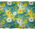 Claude_s_daisy_impression_botanical_new_25-02-2015_comment_64188_thumb
