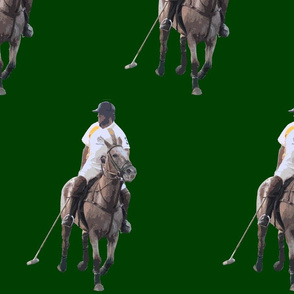Carriage Trade Polo Hunter