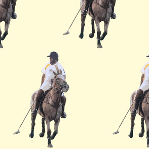 Carriage Trade Polo White