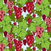 Rrrrrrfresh_grapes_crimson_day_3_shop_thumb