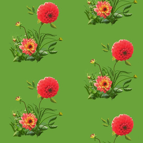 dahlia_A_edit_1b_Picnik_collage